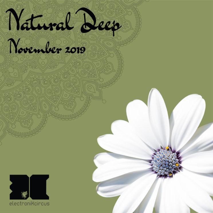 naturaldeepnovembre2019